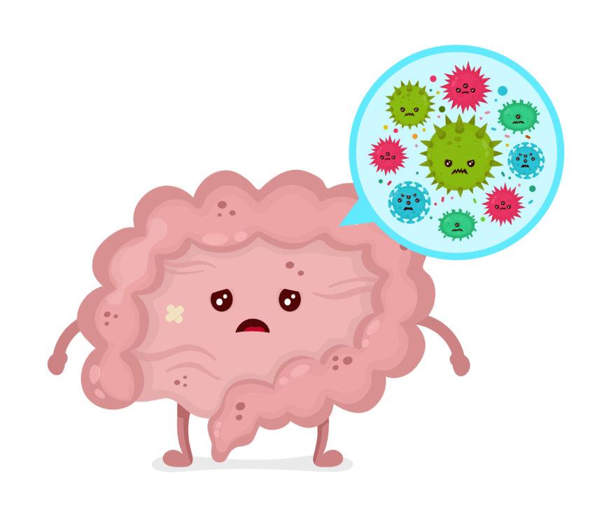 ADHD-hjärnan och tarmen – så kan maten påverka